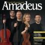 Il Quartetto Noûs protagonista di Amadeus in edicola a febbraio 2016